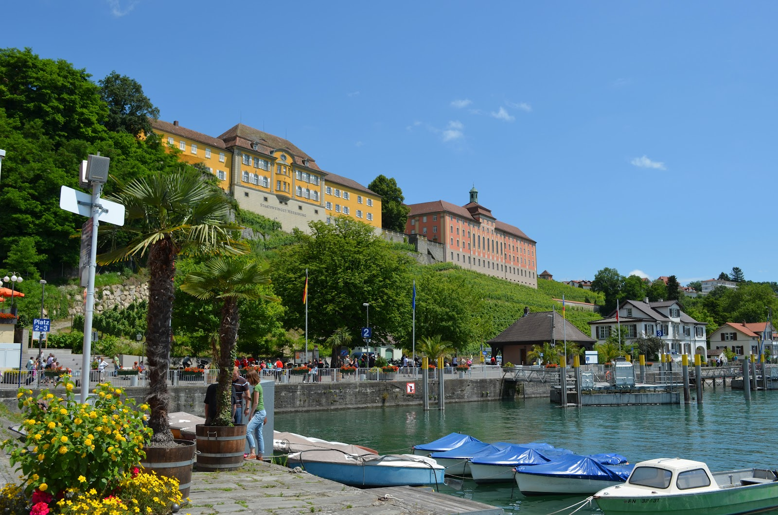 Meersburg single party