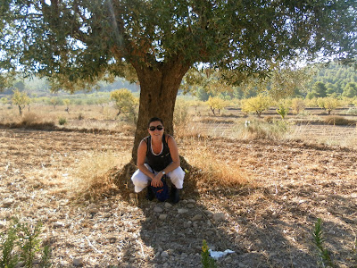 Pantano de Tibi, excursión, Alicante, Tibi, pantano, nos vamos de excursión,