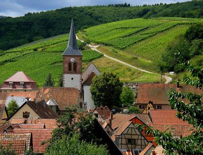 Tout savoir sur la région viticole et les vins d'Alsace blog vin beaux-vins