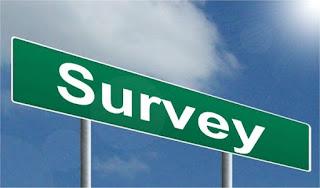 survey ankiety