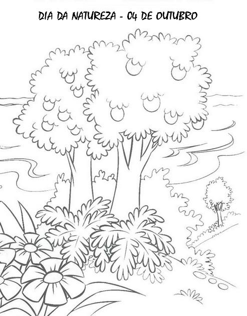 Dia Da Natureza Desenhos E Atividades Para Colorir Imprimir