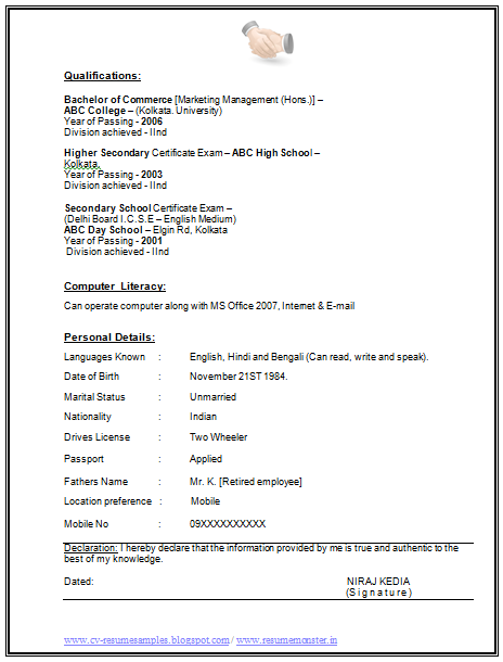 ms office literacy sample resume