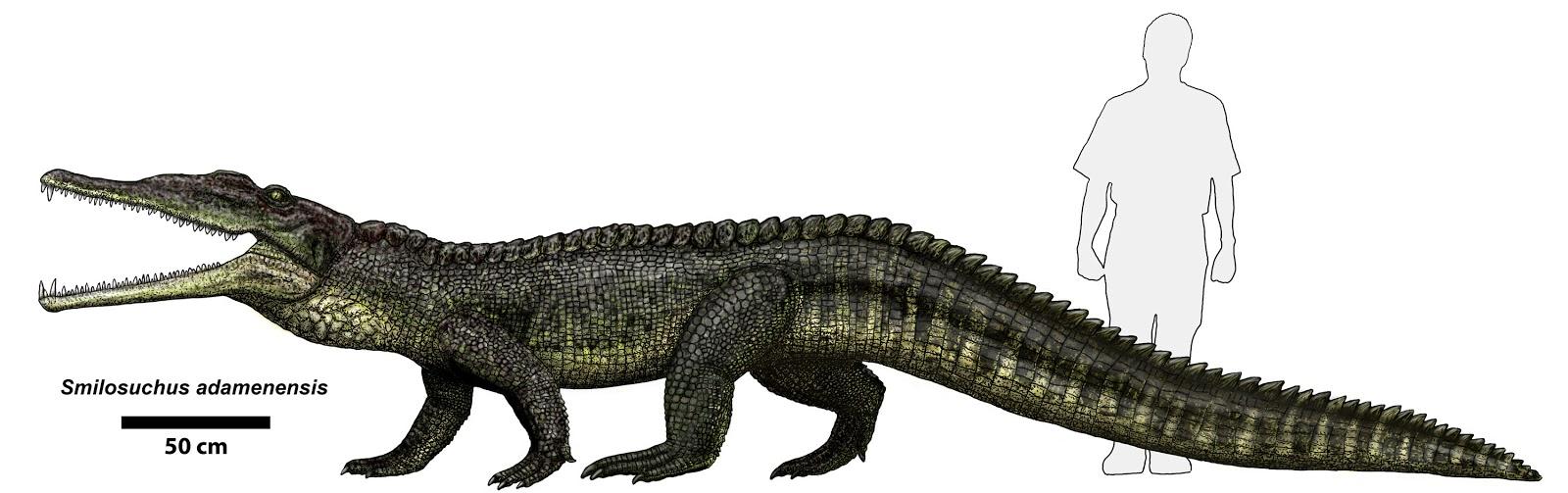 Purussaurus Vs Deinosu...