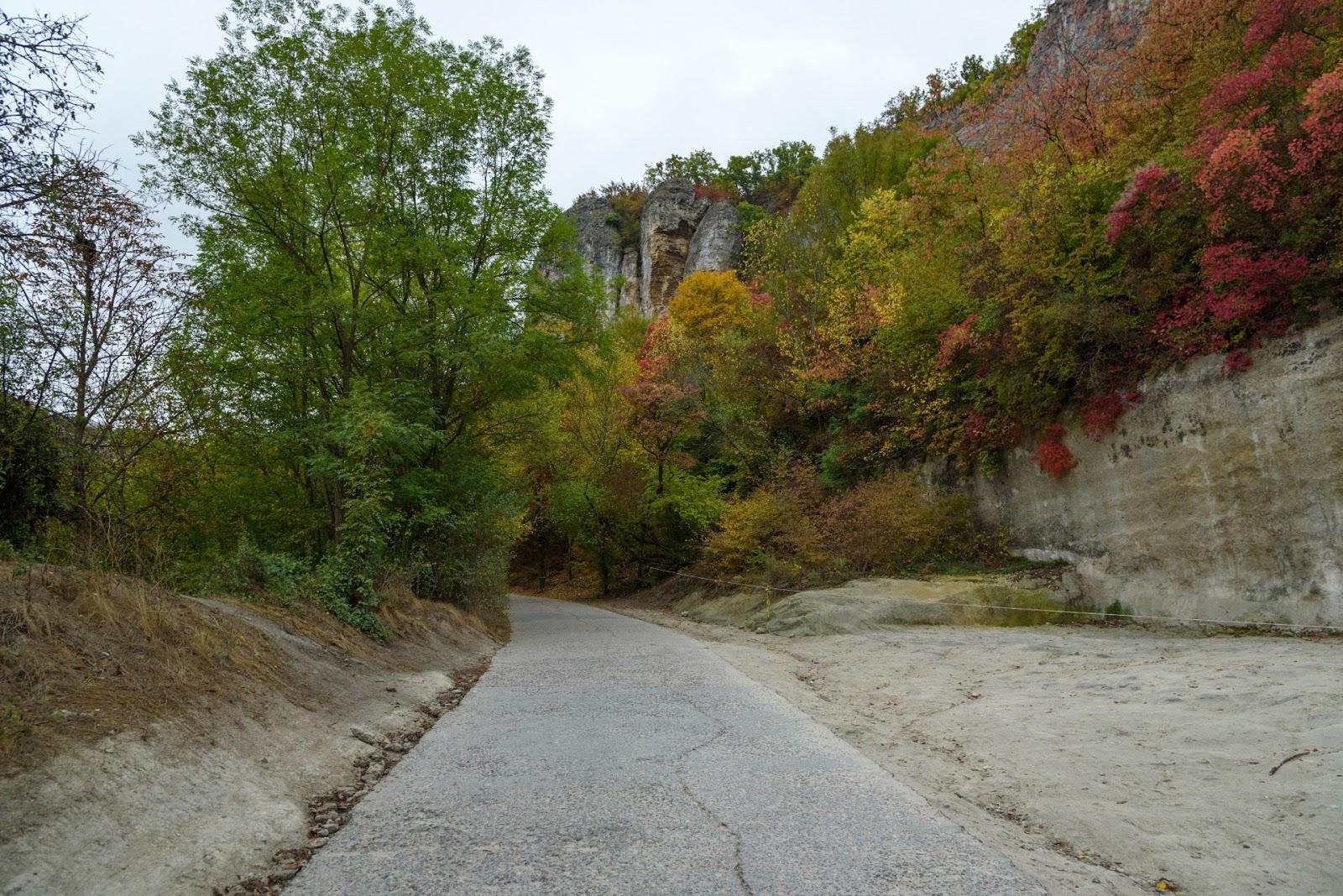 Дорога к Успенскому монастырю