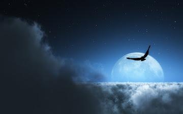 Nocne środowisko naturalne a sztuczne oświetlenie zewnętrzne
