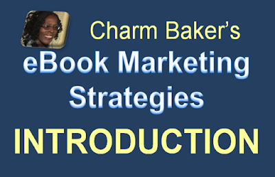 eBook Marketing Strategies:  A 60 Day Progress and Troubleshooting Journal