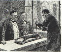 Vaccin contre la rage (Louis Pasteur)