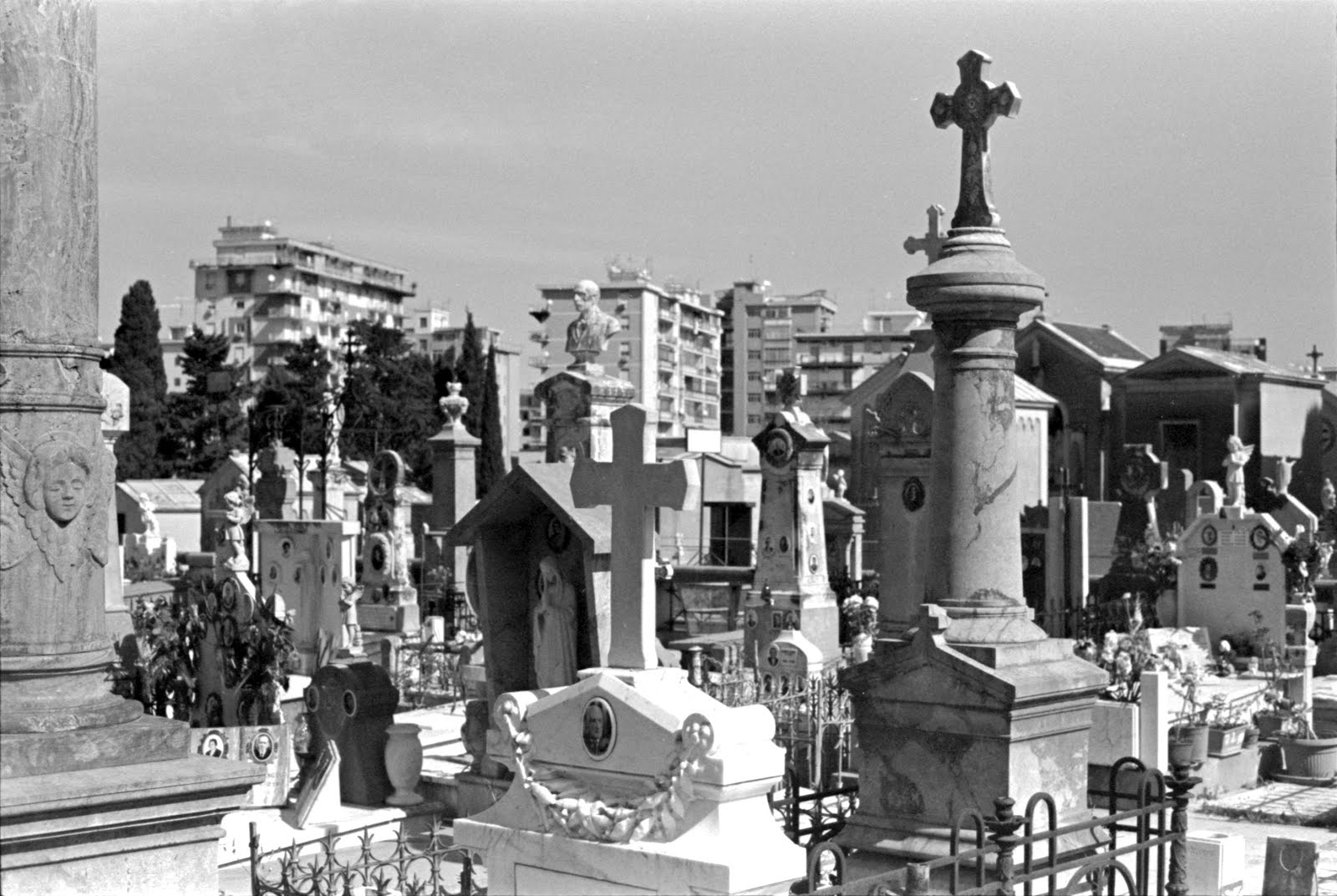 City of the Dead, Palermo, 2019.
