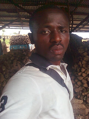 Yam business you can do in Nigeria