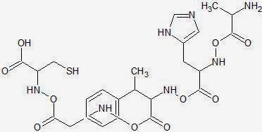 Organic Chemistry II: Artificial Amino Acid