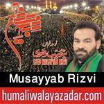 http://www.humaliwalayazadar.com/2015/09/musayyab-ali-rizvi-nohay-2005-to-2016.html