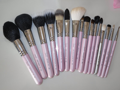 daniellelovemakeup sigma brushes  travel kit nice in