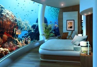 plsacon: Bedroom Aquarium, Seattle, Washington