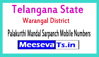 Palakurthi Mandal Sarpanch Mobile Numbers List Warangal District in Telangana State