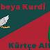 Kürtçe temel başlangıç düzeyi/Alfebeya Kurdî