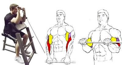 Curl de bíceps con agarre en pronación.