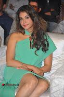 Actress Isha Koppikar Pos in Green Dress at Keshava Telugu Movie Audio Launch .COM 0010.jpg