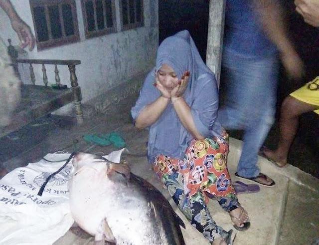 BREAKING NEWS: Warga Sepuak Kaget Lihat Ikan ini!