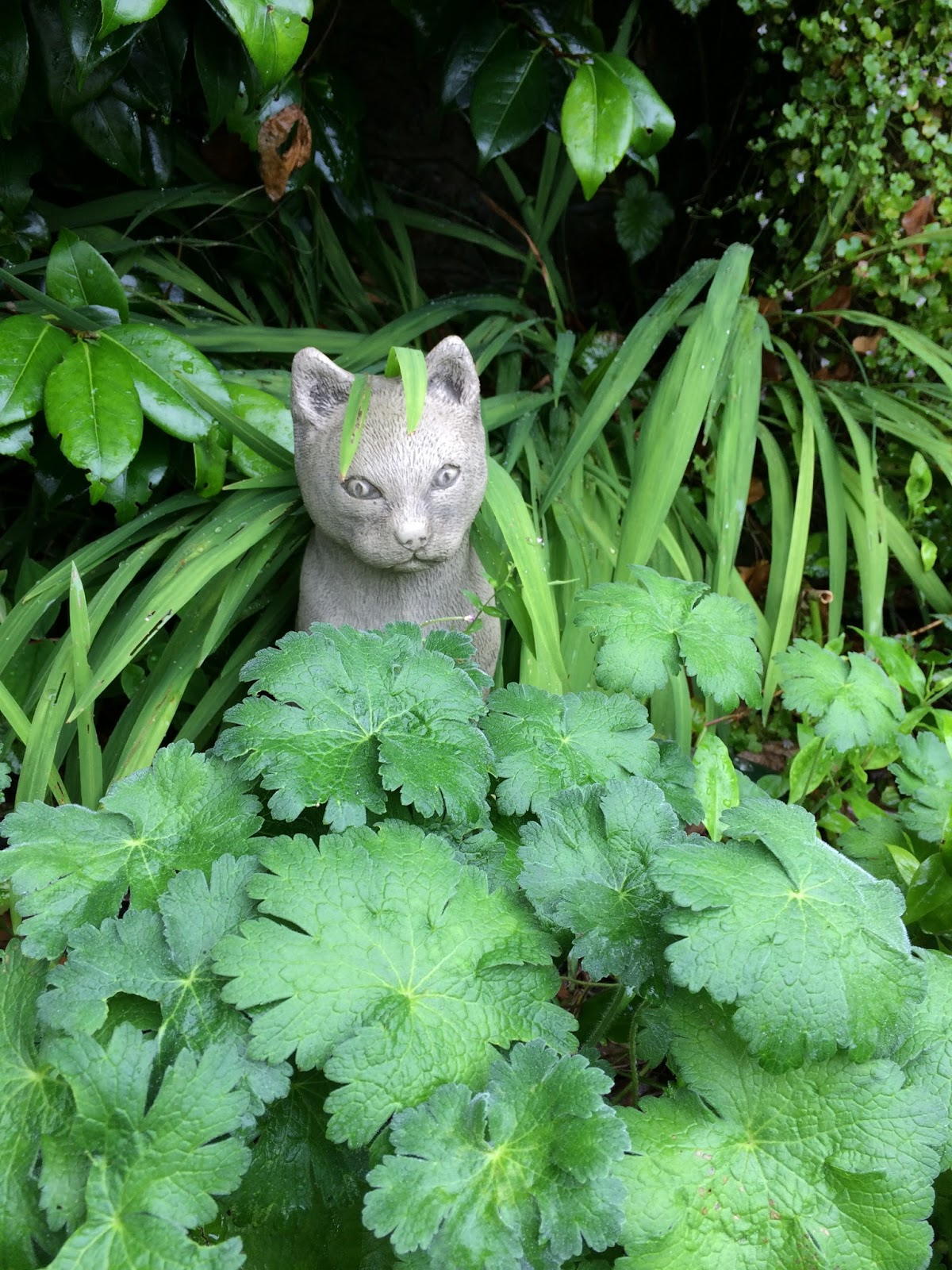 Garden clean up - a statue of a cat in grey stone