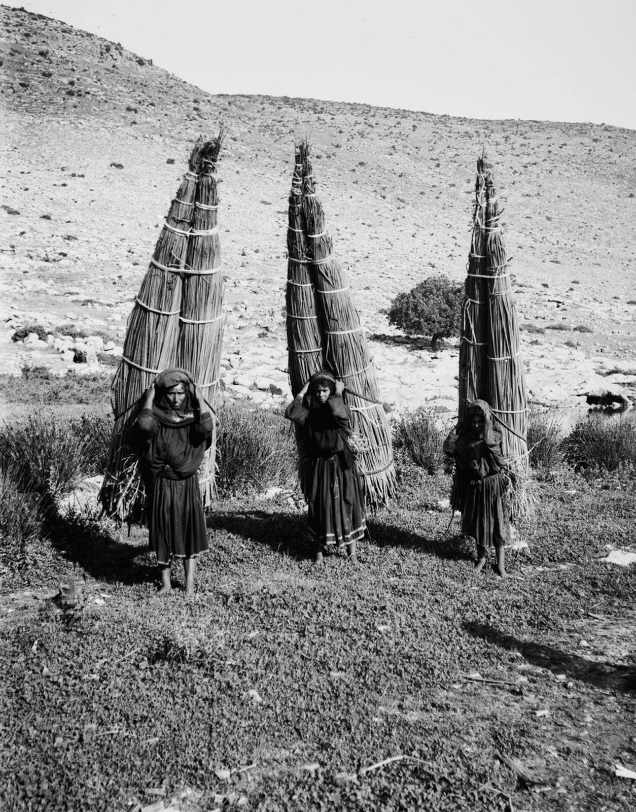 Women carry bundles of papyrus.