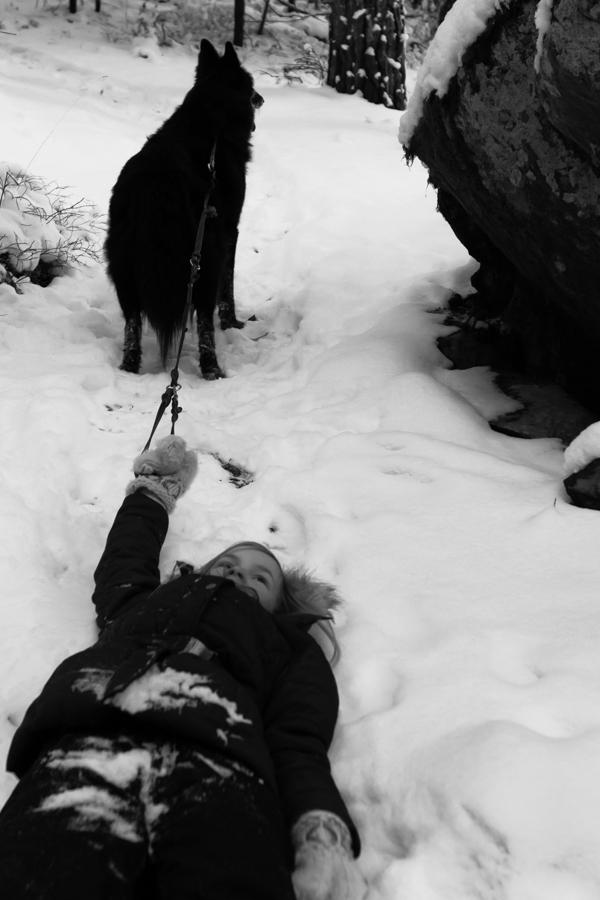 tyttö ja koira metsässä
