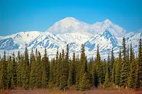 dağ, orman, gök-yüzü, akan-zaman,