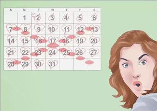 Cara Menghitung Masa Subur Wanita