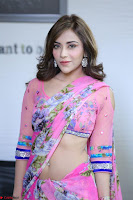 Actress Angela Krislinzki in Pink Saree Blouse Exclusive Pics March 2017 ~  078.JPG