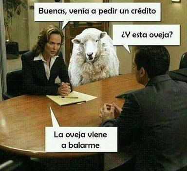 oveja viene balarme