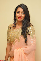 Bhanu Shri looks stunning in Beig Saree choli at Kalamandir Foundation 7th anniversary Celebrations ~  Actress Galleries 030.JPG