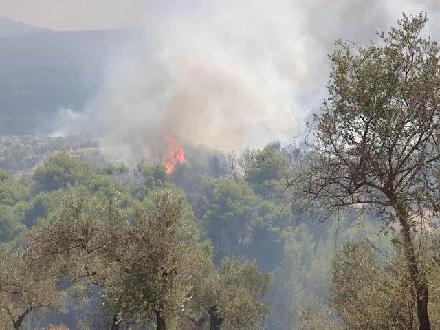 Συνεργεία της Περιφέρειας Πελοποννήσου ξεκινούν ελέγχους στην πυρόπληκτη Κορινθία