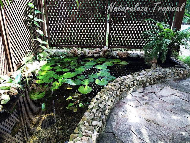 Pequeño estanque realizado en una terraza