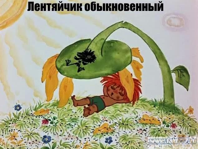 уничтожение сорняков