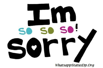 i-am-sorry-i-never-meant-to-hurt-you-whatsapp-dp