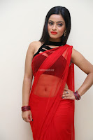 Aasma Syed in Red Saree Sleeveless Black Choli Spicy Pics ~  Exclusive Celebrities Galleries 068.jpg