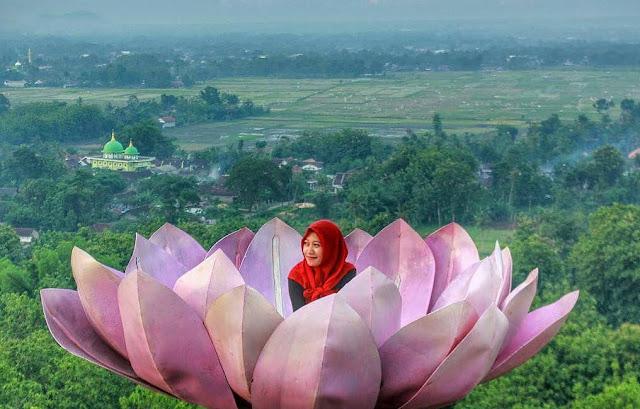 Lokasi dan Rute Menuju Bukit Bonsai Watulawang: Spot Wisata Paling Baru di Blitar