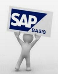 SAP BASIS - Consultoria