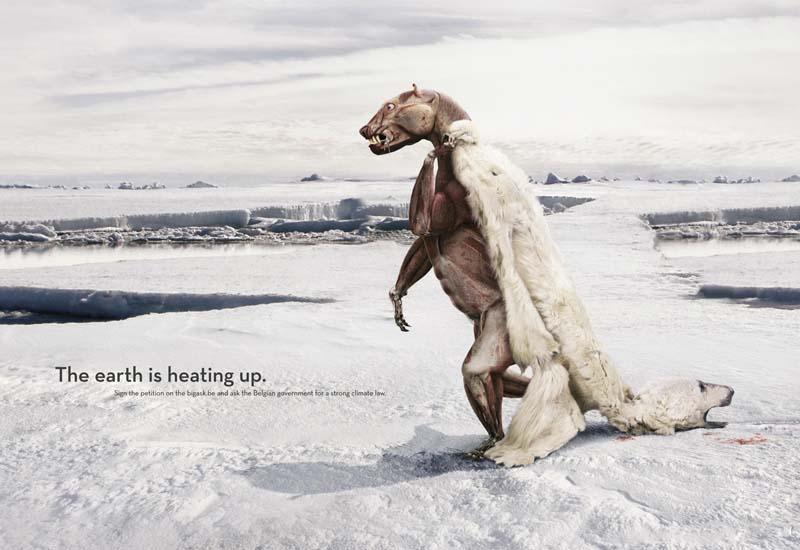 Effects of Global Warming on Polar Bears - Eureka Sparks