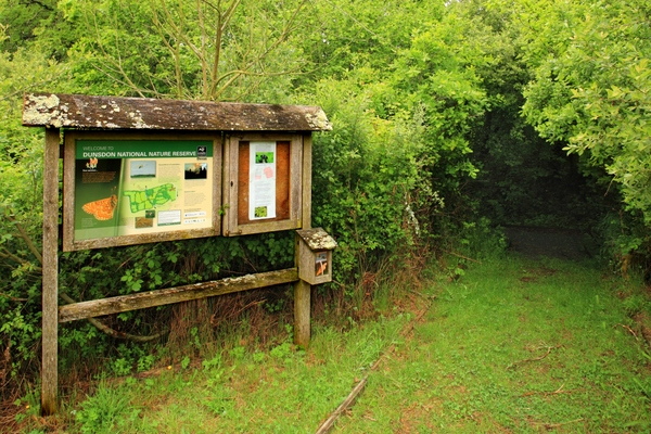Devon Wildlife Trust. Dunsdon Path. Photo copyright Dave Chamberlain (All Rights Reserved)