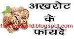Akhrot Ke Healthy Benefits - अखरोट के लाभ
