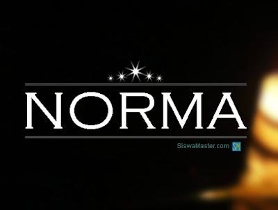 Pengertian Norma, Tujuan, Fungsi & Manfaatnya