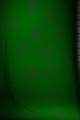 Studio Background 8x12
