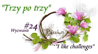 http://like-chellenges.blogspot.com/2017/03/wyzwanie-24-trzy-po-trzy.html