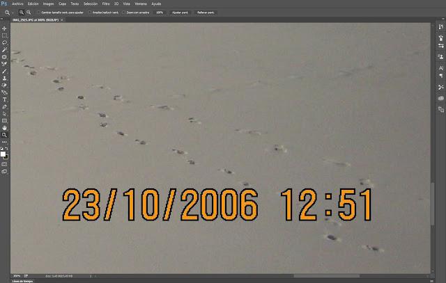 Usar herramienta zoom para ampliar área de trabajo en Photoshop