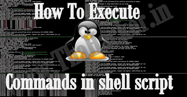 How To Execute Commands In A Shell Script