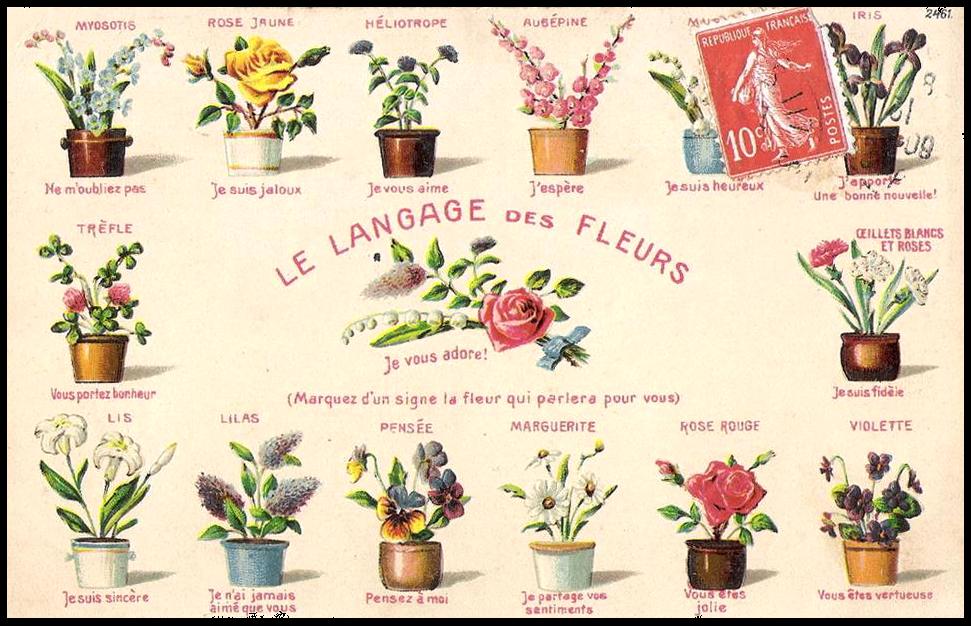 Héraldie: Le langage des fleurs