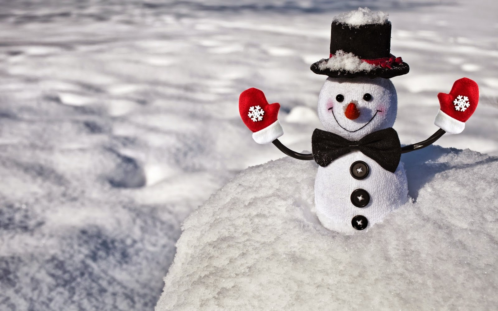 Little-snowman-with-hat-in-snow-playing-happy-smile-image.jpg