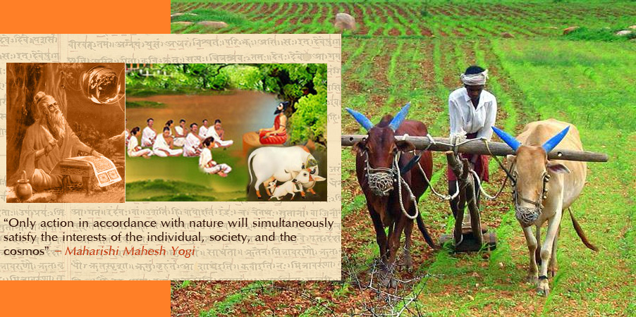 Vedic traditional Agriculture