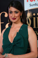 Laxmi Rai in a Deep neck Beautiful Green Gown Cute Actress Laxmi Rai ~  056.JPG