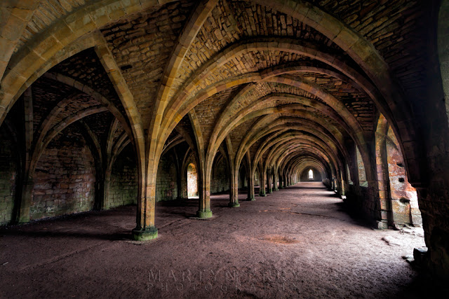 Vaulted roof of the Cellarium at the ruins of Fountains Abbey